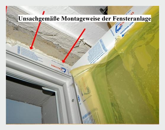 Fenster für  Odenthal